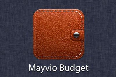 Майвио Бюджет: деньги любят счет